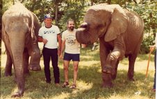 Photos I took in July, 1982 at the Henry Ford Community College with Bucky Steeles Elephants. Hezy asked me to take a couple photos of him with an African elephant, he said he had never touched a live African elephant! //Wayne Jackson, Canada