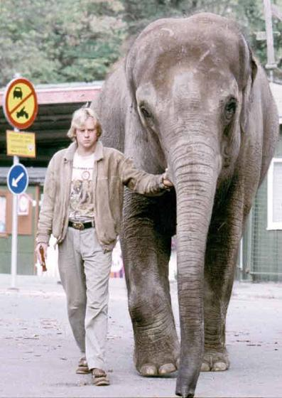 Dan Koehl elephant Shiva Stockholm 1988