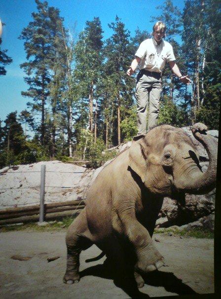 Kolmarden Zoo 2000